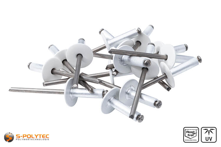Facade rivets pure white (RAL 9010)
