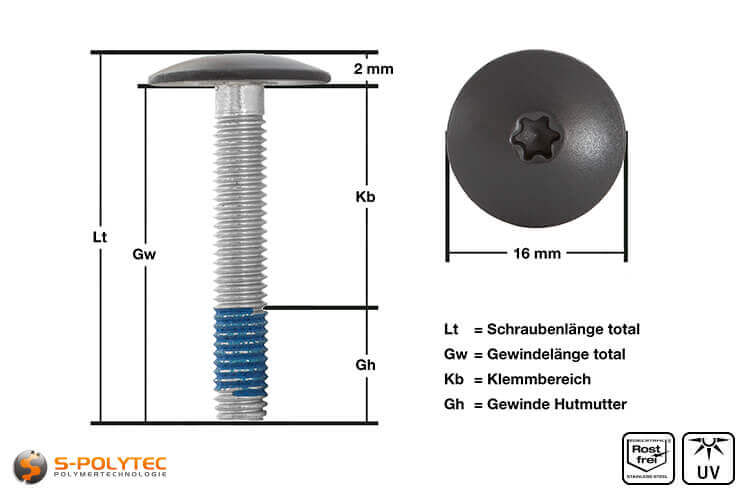 View of  measurements of our balcony screw with anthracite screw head